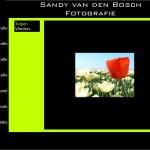 Sandy van den Bosch